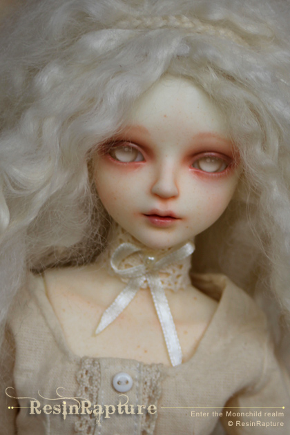 MYou-Ailsa-Lily